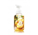 Gentle Foaming Hand Soap Bath and body works Very merry meringue